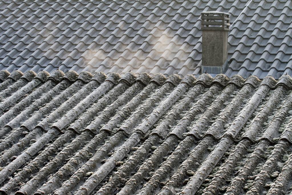 remove-asbestos-cost