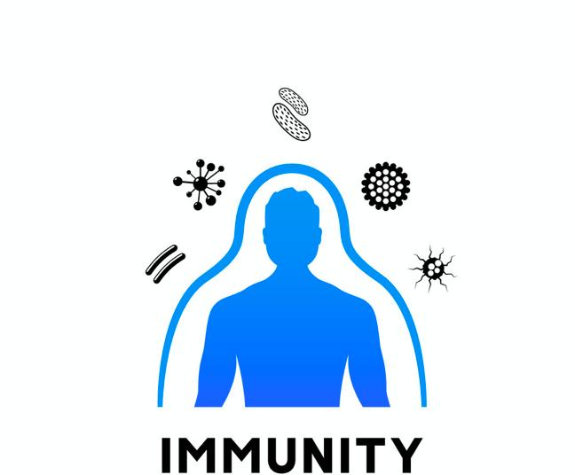 increase immunity